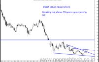 HDIL , India Bulls Real Estate and SBI