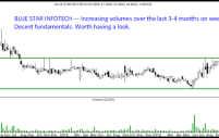 Blue Star Infotech – Interesting Small Cap IT Company