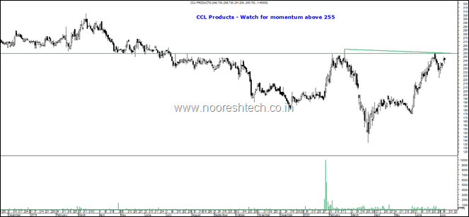 ccl products